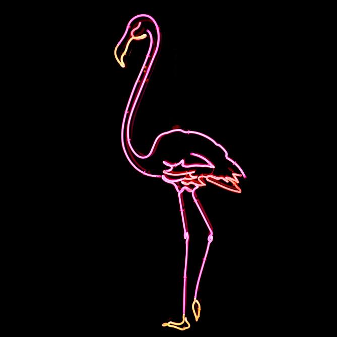 Neon Pink Flamingo