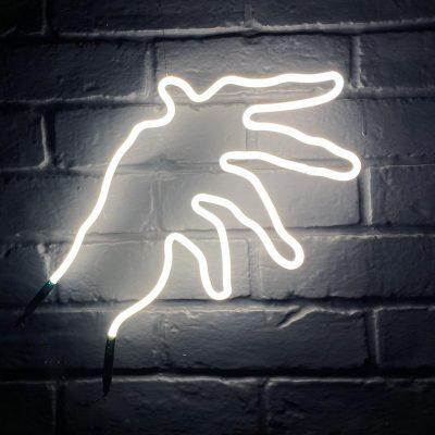 Neon Hand 46